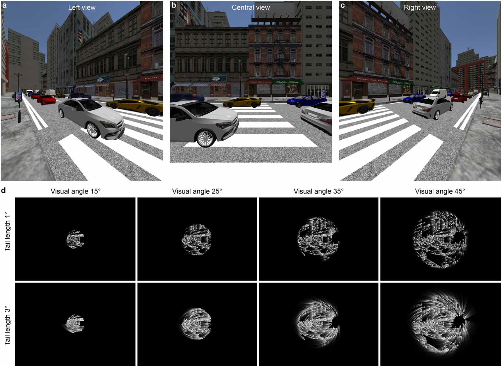 A digitally presented street view and the distorted monochrome version below illustrate the various ways in which it can be represented by virtual phosphorus.